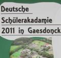 Deutsche Schüler Akademie